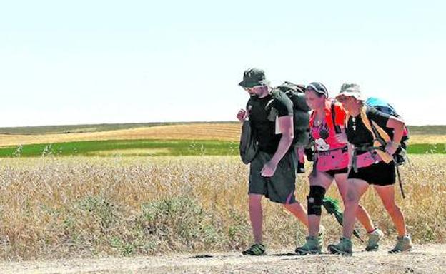 Unos peregrinos se dirigen hacia la localidad de Carrión de los Condes, en el paso del Camino de Santiago por Palencia./ANTONIO QUINTERO