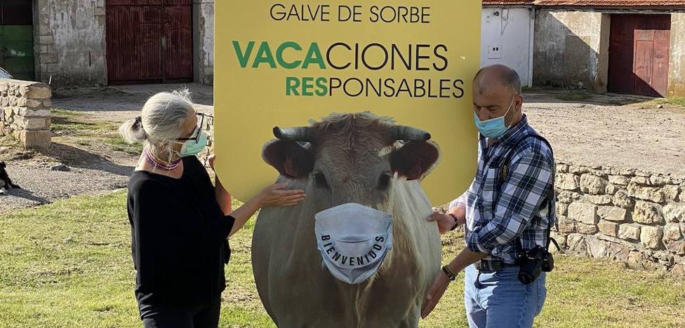 Una vaca con mascarilla pide responsabilidad a los veraneantes | El Correo